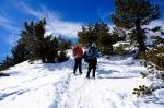Snowshoeing San Jacinto Peak