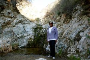 Joyce at the Waterfalls