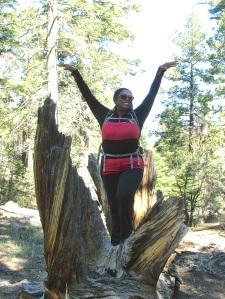 Enjoying the trees